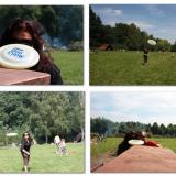 Frisbee - latające dyski